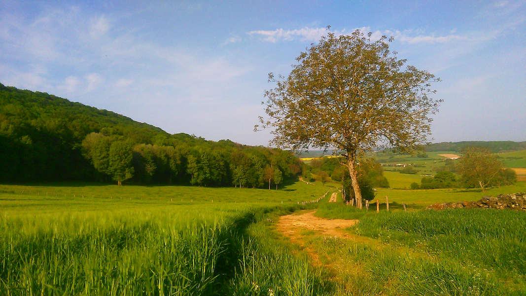 Uitzicht wandeling bij A-Rigaud